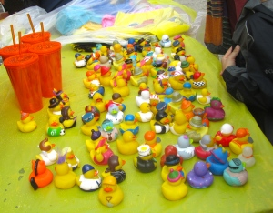 Lots of ducks for sale