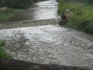 Black Hills stream