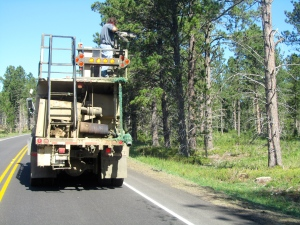Seeding the shoulder of the road