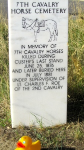 Tribute to lost horses