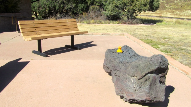 Zeb the duck on lava rock at Visitors Center