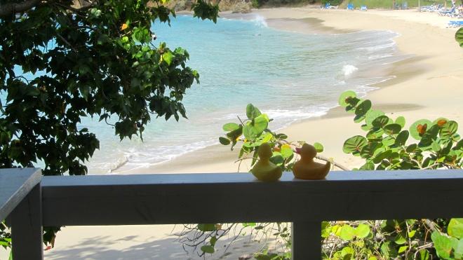 Beach used for weddings