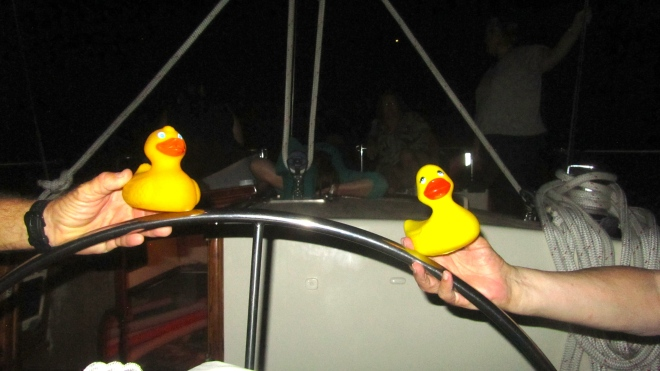 Ducks driving the sailboat!