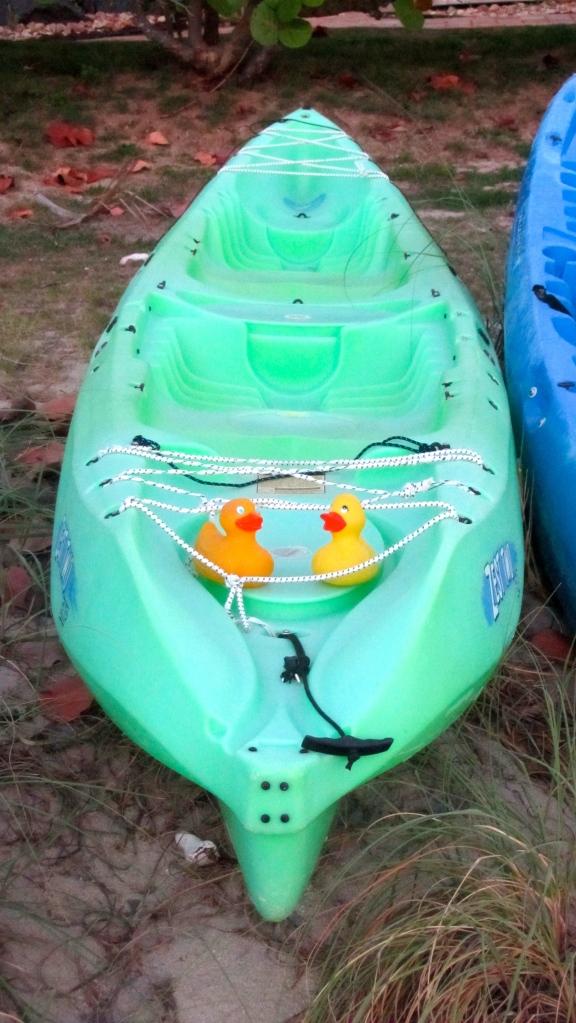 Ducks in a kayak