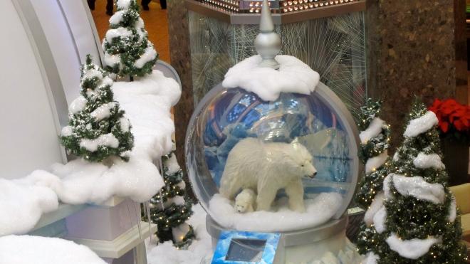 This looks like polar bear weather