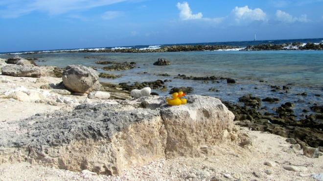 Rugged shore near baby beach