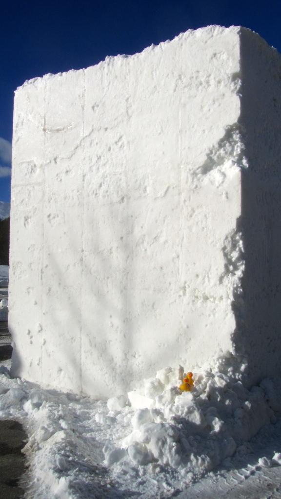 20 ton snow block and 2 small ducks