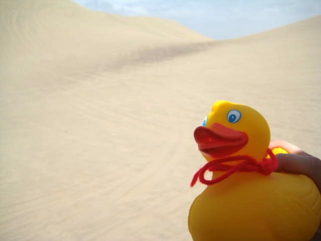Big sand dunes