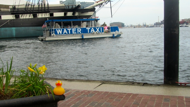 I love the water, but I am a duck.  You will love water taxis also.