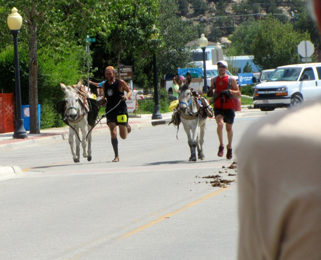 First two burros to finish race