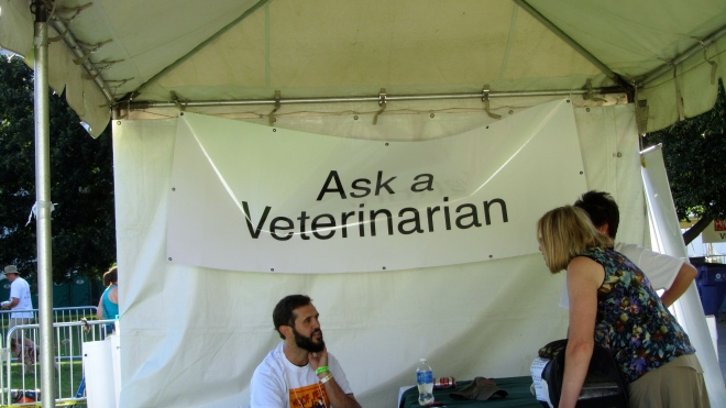 Ask the vet and help your pet!