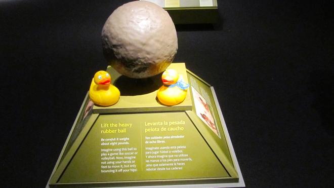8 pound rubber ball
