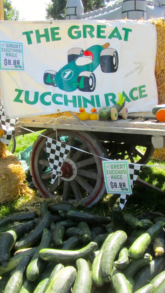 Wow!  The Great Zucchini Race