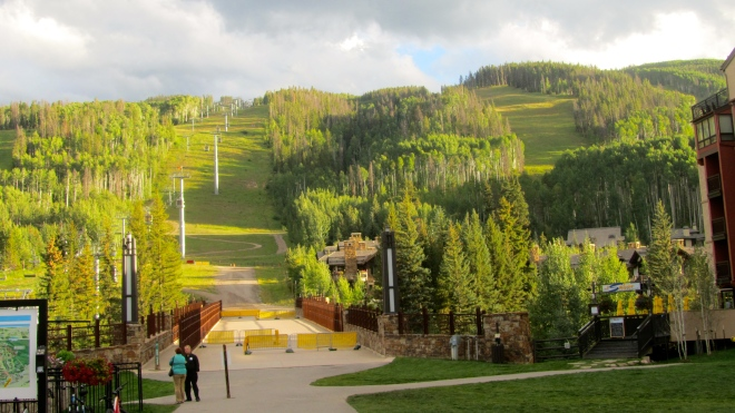 Ski run in the summer