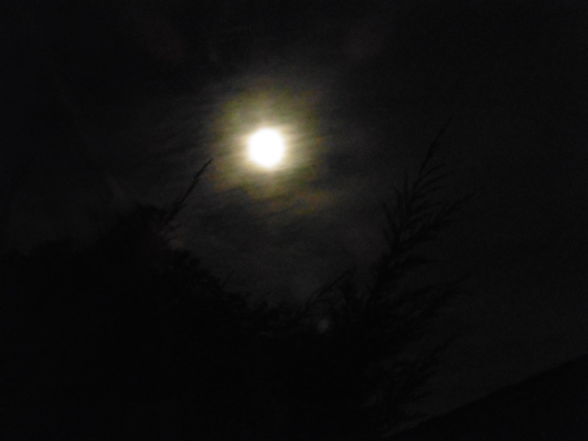 Full moon for birthday evening
