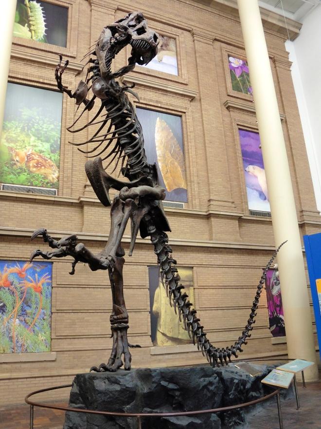 T-Rex greets us!