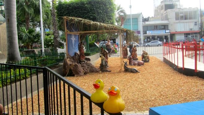 In Mazatlan's main plaza