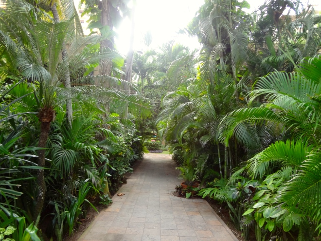 Path near entrance of resort
