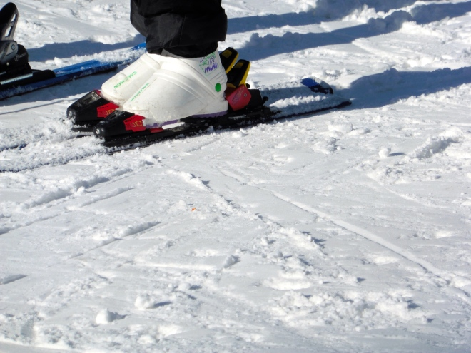 Shorter humans with shorter skis