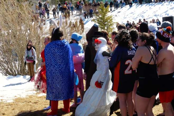 These humans will take the polar plunge.