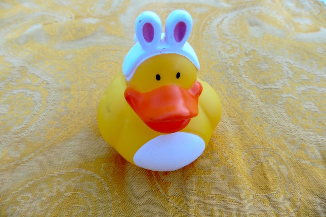 Easter Duck is here