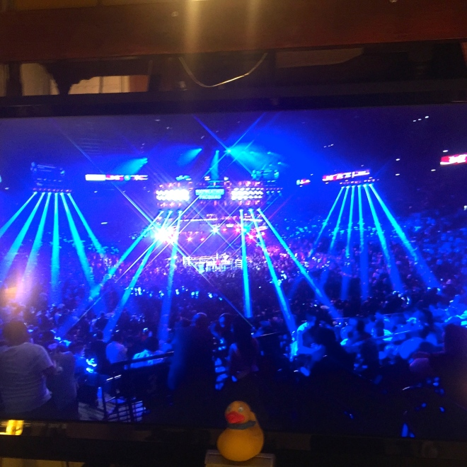 The lights accentuate the boxing ring