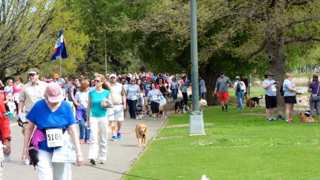 What a great turn out for the Furry Scurry