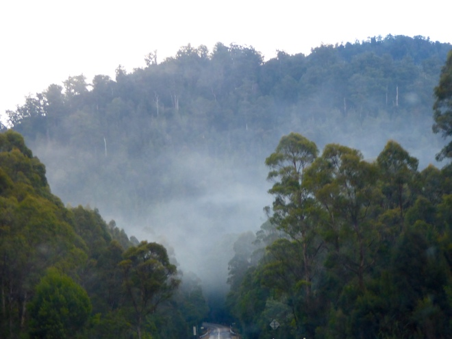 Cold, foggy morning leaving Burnie Tasmania