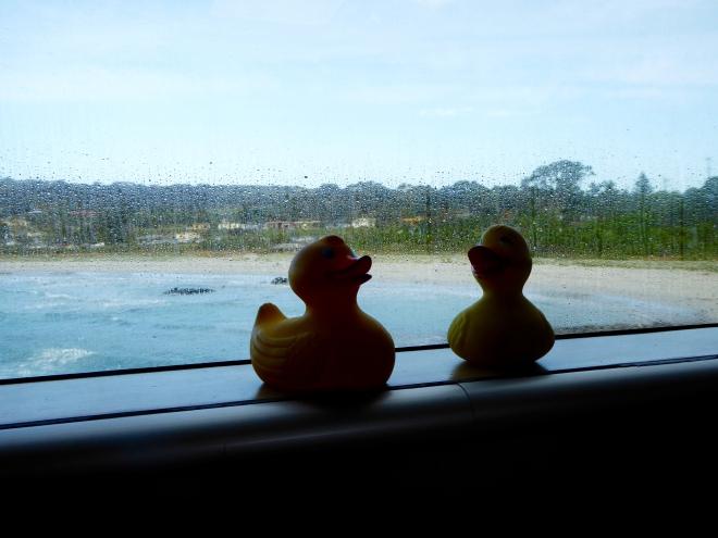 We are approaching Kangaroo Island