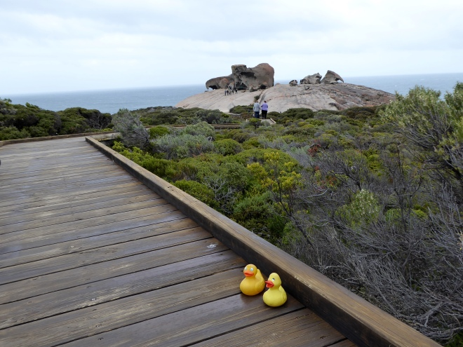 On the boardwalk to Remarkable Rocks