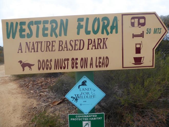Western Flora
