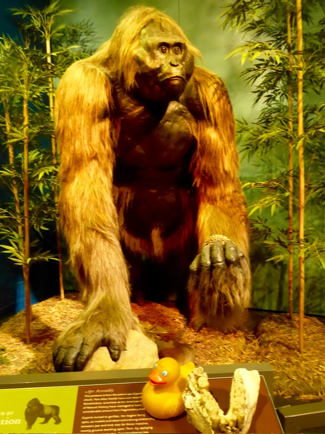 He lived 300,000 years ago
