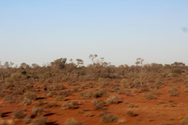 truetrac track saw guide system australia