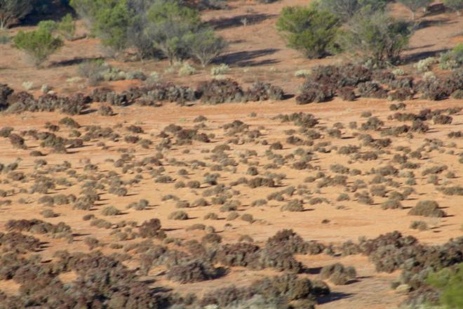 Desert outback terrain