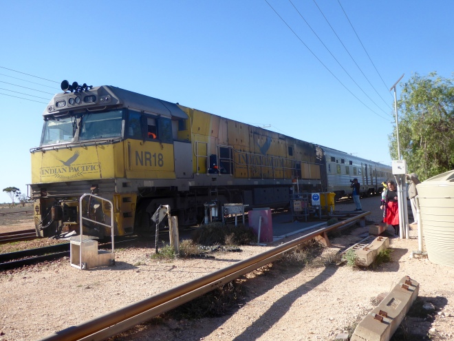 Our train in Cook, Australia