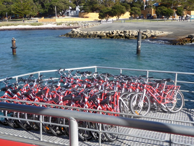 Our ferry brought all these bicycles
