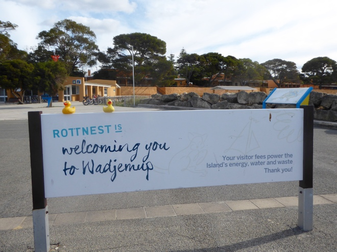 Welcome to Rottnest Island