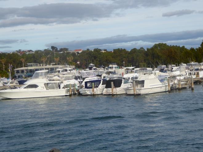So many yachts