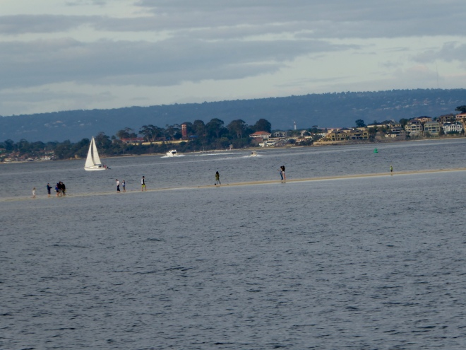 Walking across the Swan River
