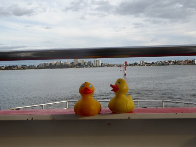 On the ferry. Let's go to Rottnest Island