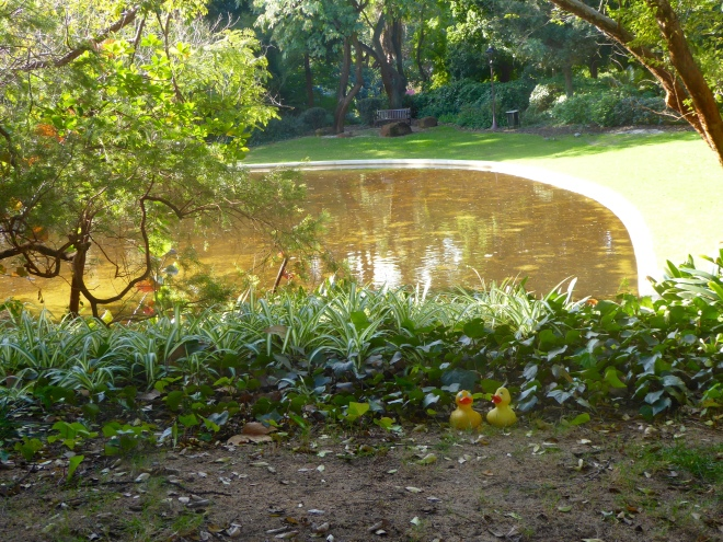 Lake looks peaceful