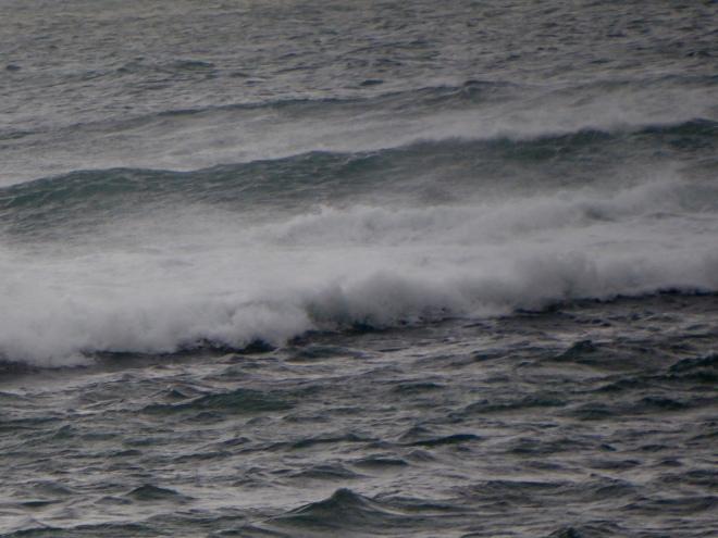 Coast at Dongara