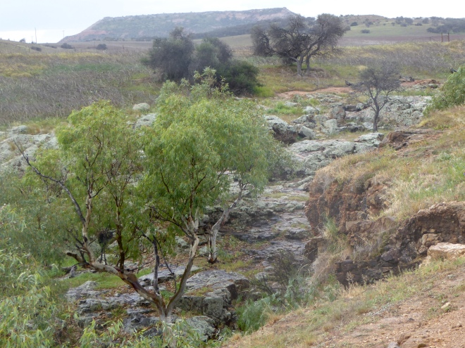 Oakabella Creek behind homestead