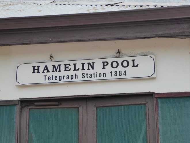 Hamelin Pool. Helped NASA in 1964