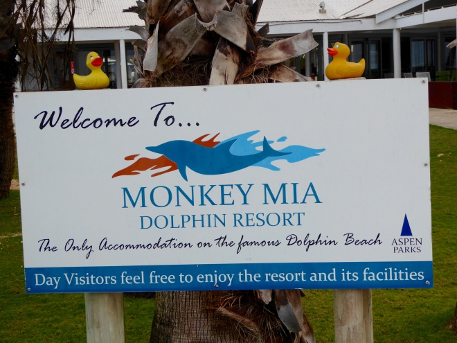 Monkey Mia Dolphin Resort