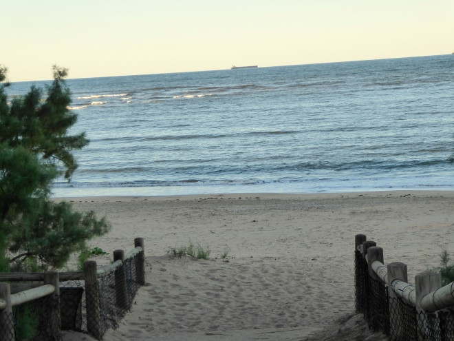 Path to beach at Indian Ocean