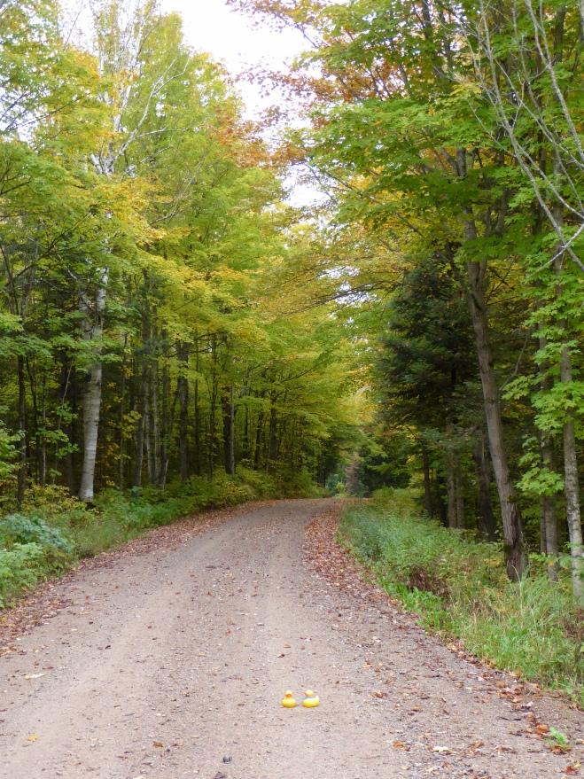 Quiet roads