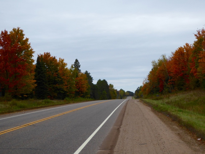 Typical Northern Wisconsin road