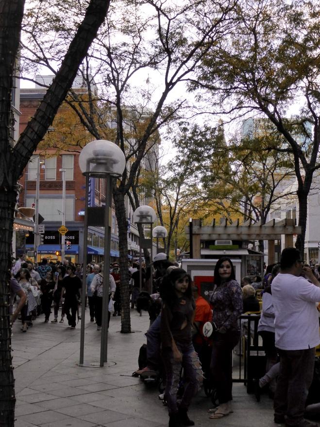 Wonderful pedestrian mall