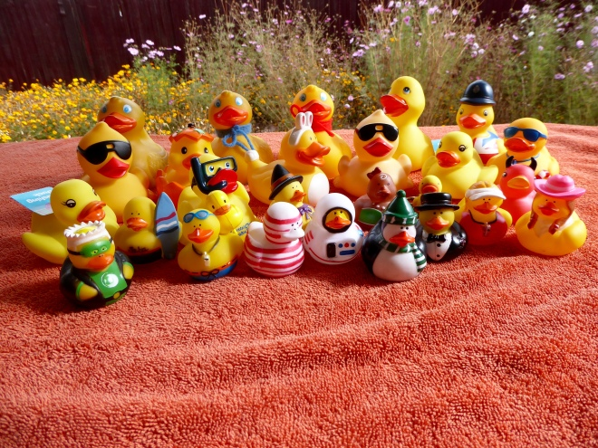 We love National Rubber Ducky Day!!
